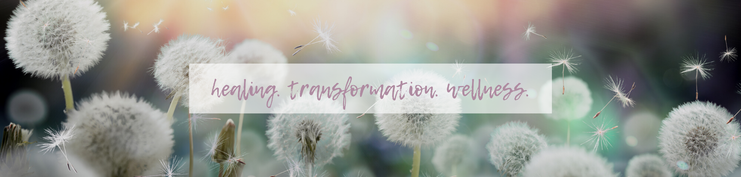 GW healing. transformation. wellness. 2500×600 d